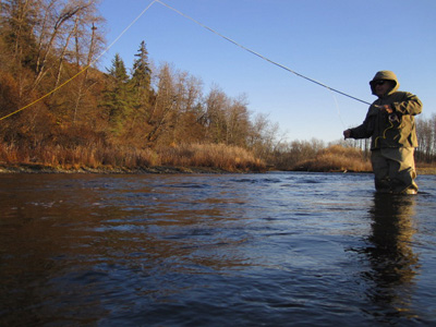Alaska fishing trips vacation planning for Alaska out of state fishing license